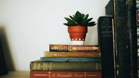 ¿Tienes que organizar los libros de tu estantería? Pinterest te ofrece estas originales ideas