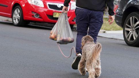 Nueva Zelanda, contra el plástico: 60.000€ de multa a las tiendas que entreguen bolsas