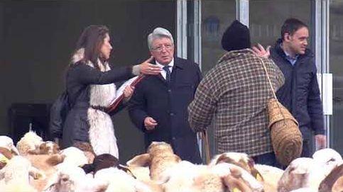 Enrique Cerezo lucha para que el Metropolitano no se le llene de ovejas