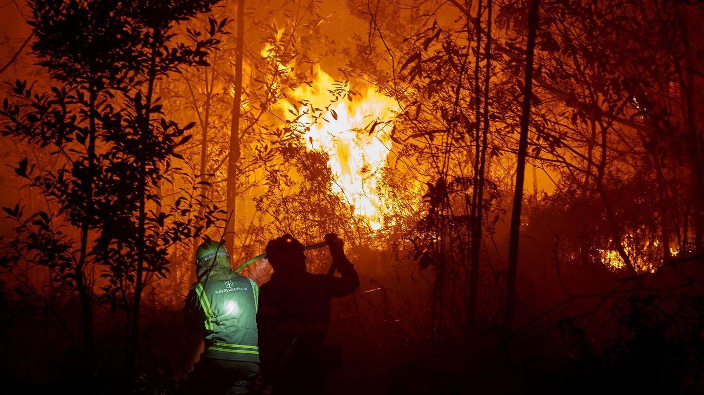Incendios en Galicia. (EFE)