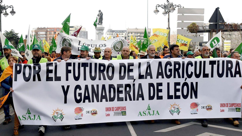 Protestas de agricultores a inicios de año. (EFE)