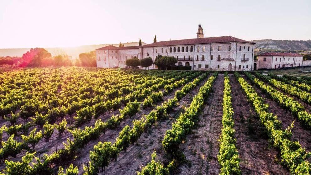 Importantes movimientos sacuden el mundo del vino español