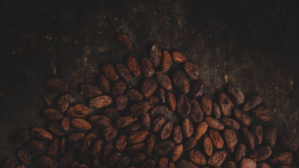 Foto: El cacao es un grano con multitud de beneficios para la salud.