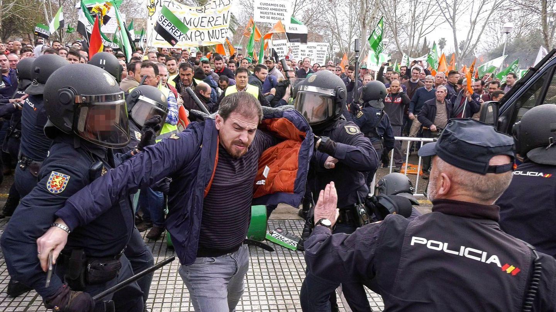 Centenares de agricultores protestan en Don Benito, Badajoz. (EFE)