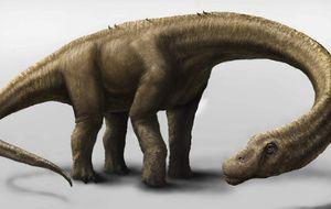 Un dinosaurio que pesaba tanto como una manada de elefantes