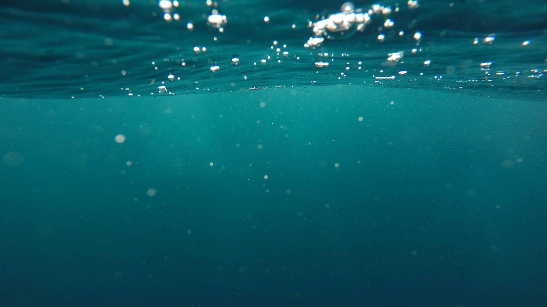 La acidez atmosférica impacta la ecología oceánica
