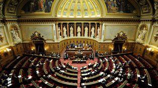 Carta abierta a 41 senadores franceses