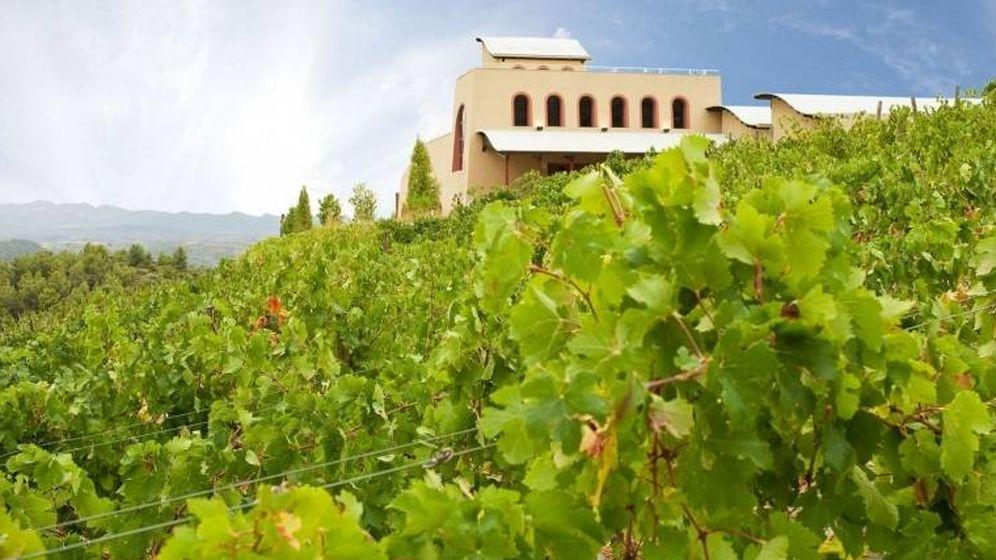 Foto: Bodegas y viñedos Cal Grau