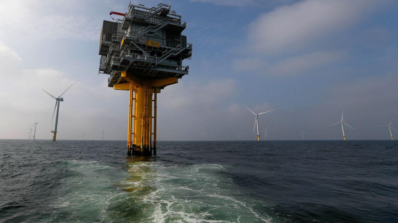 Foto de archivo de un parque eólico marino. (Reuters)