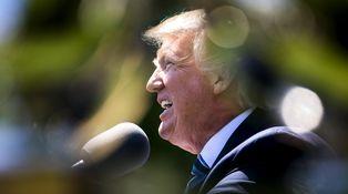 El aprendizaje de Donald Trump (y de todos nosotros) en los primeros cien días