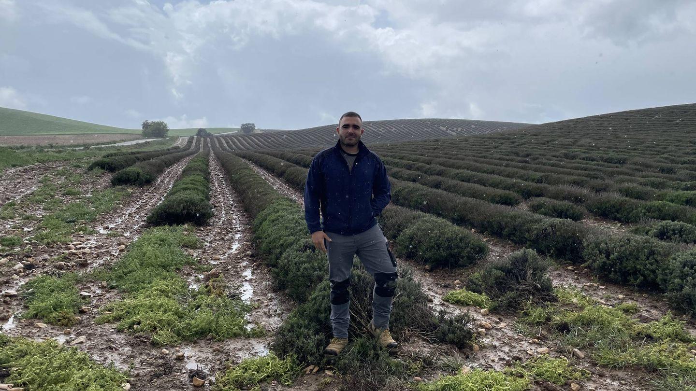 Rodrigo Carrillo en su plantación de lavanda. (A. V.)