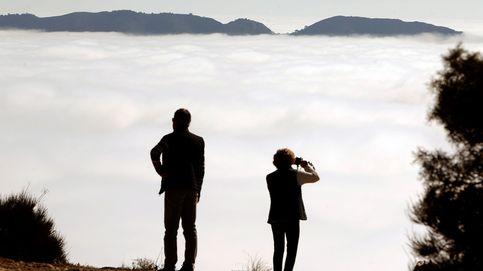 India, el mayor productor de coco y la niebla obliga a desviar vuelos: el día en fotos