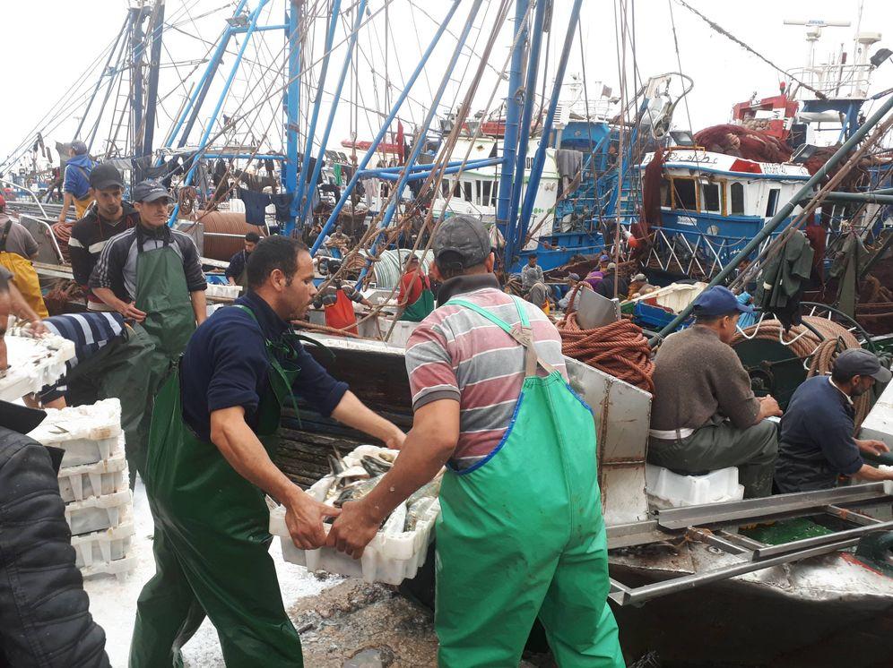 Foto: Dakhla vive de la pesca y es una región estratégica para Marruecos. (M.V)