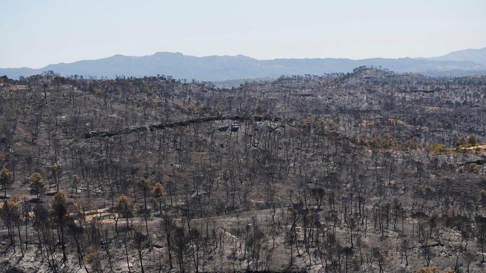 Controlado el incendio forestal de Tarragona, pero piden precauciones ante la ola de calor