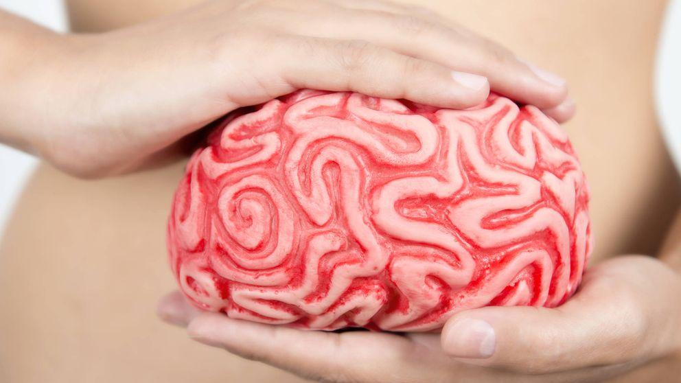 Científicos españoles descubren cómo se extiende el cáncer cerebral más agresivo