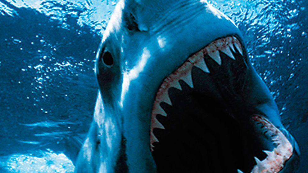 Sacrifiquemos políticos, no tiburones