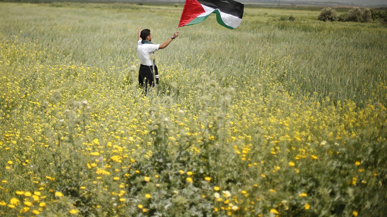 Foto: Un hombre ondea la bandera palestina en los territorios de Gaza. (Reuters)