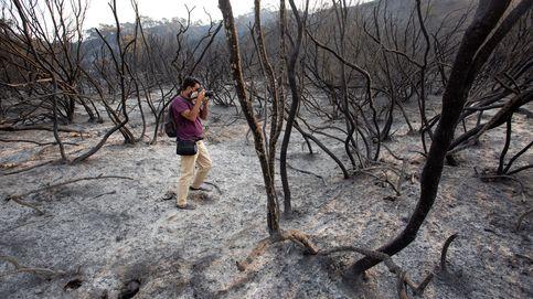 Raíces incandescentes: el riesgo latente bajo la tierra de Sierra Bermeja
