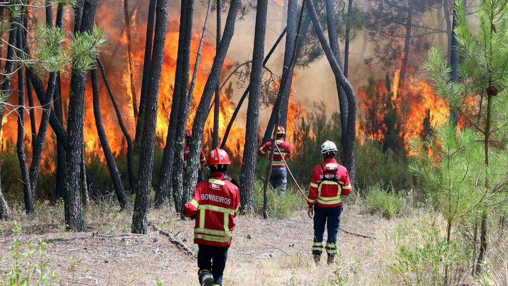 Foto: Incendio en Macao (Portugal). (EFE)
