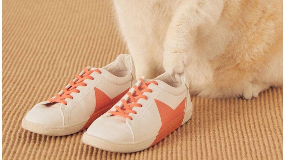 Foto: Zapatillas deportivas de Mango Outlet. (Cortesía)