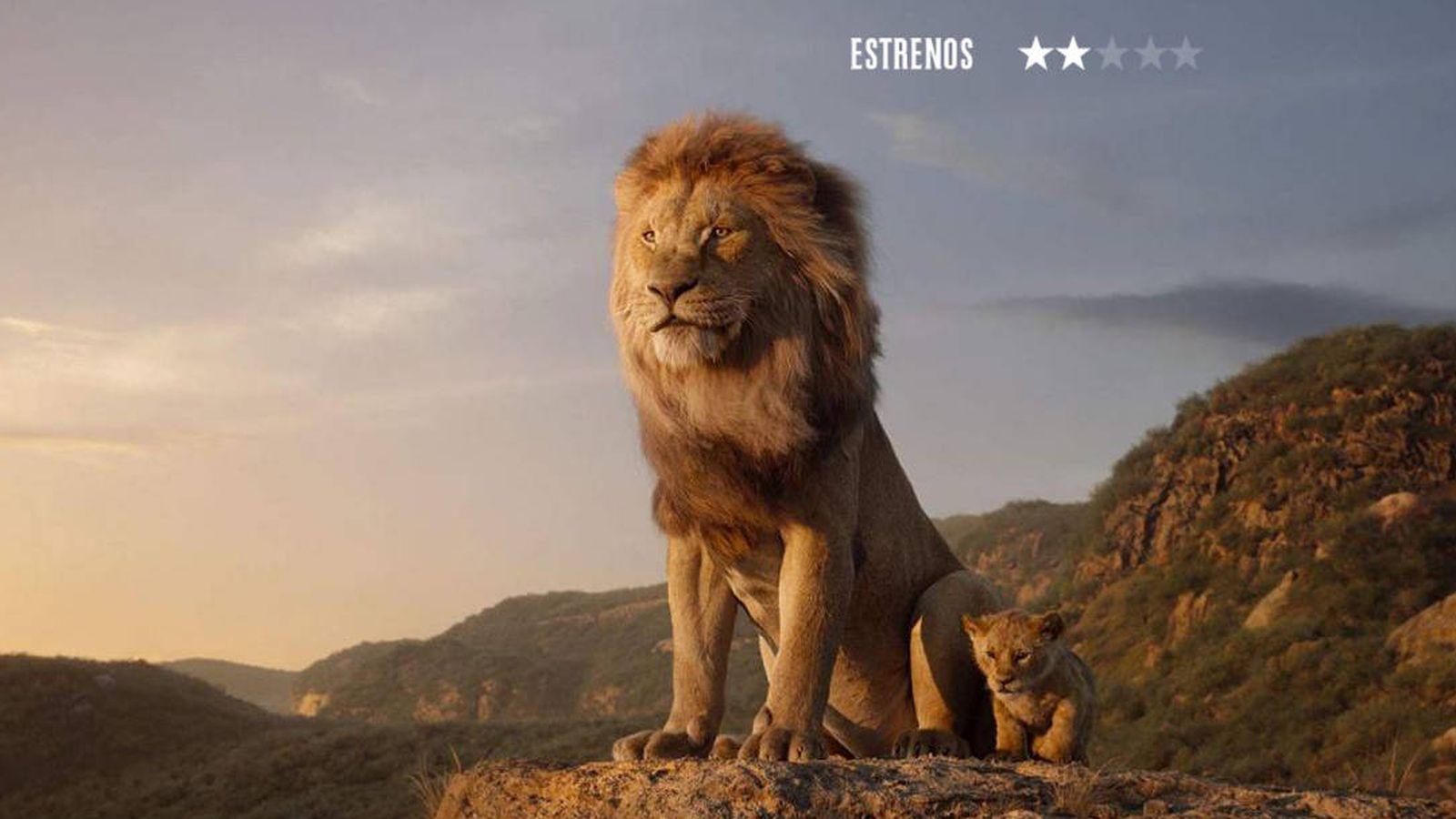 Foto: 'El rey león'.