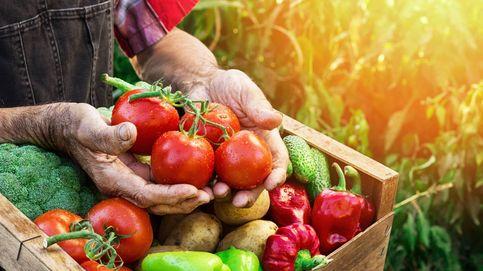 Las 'colmenas' de productores aumentan un 290% sus entregas a domicilio