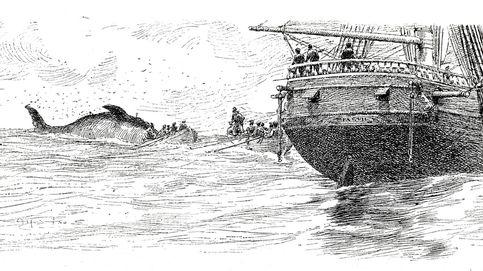 Matar vascos en Islandia: la terrible masacre de los balleneros en 1615