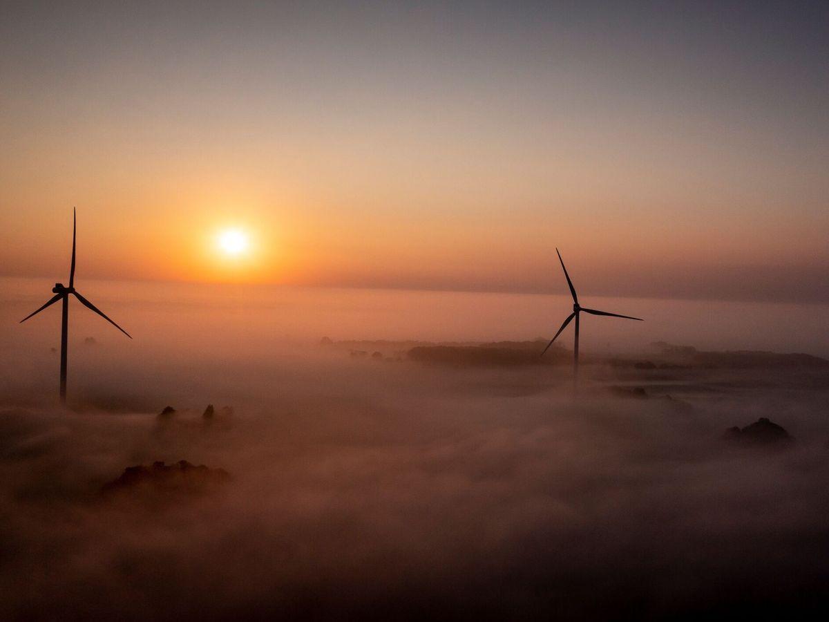 Foto: Generadores eólicos en Dinamarca. (EFE)