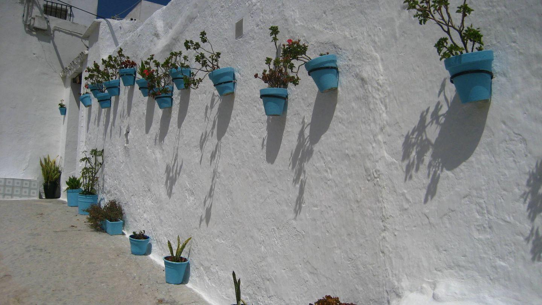 En blanco y con flores. (Cortesía Turismo Vejer)