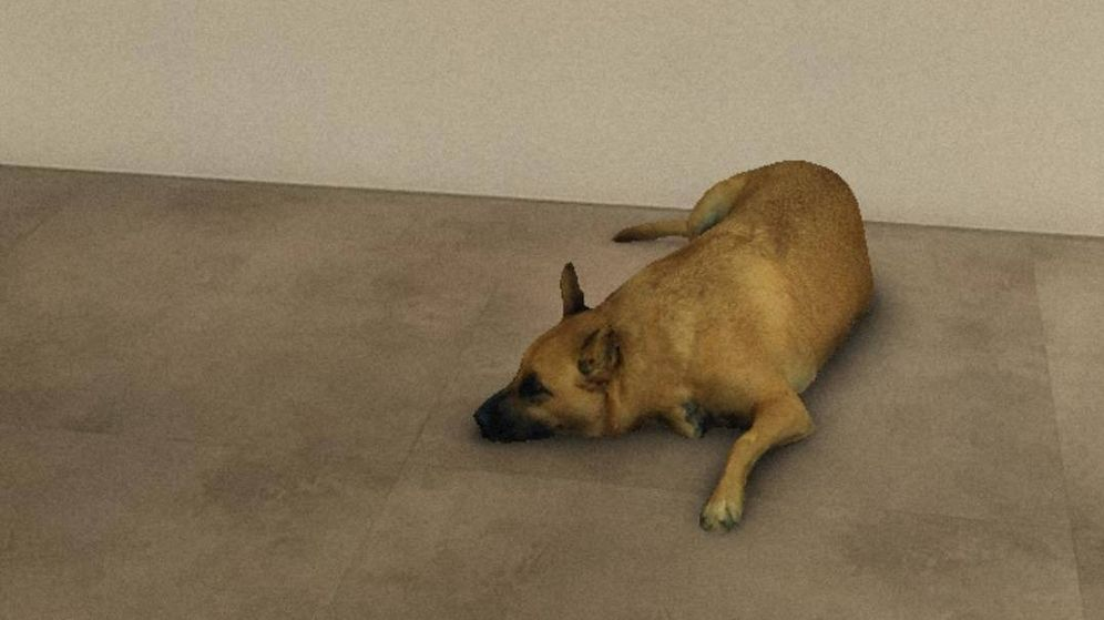 Foto: El filtro 'Sasha Dog' de Instagram