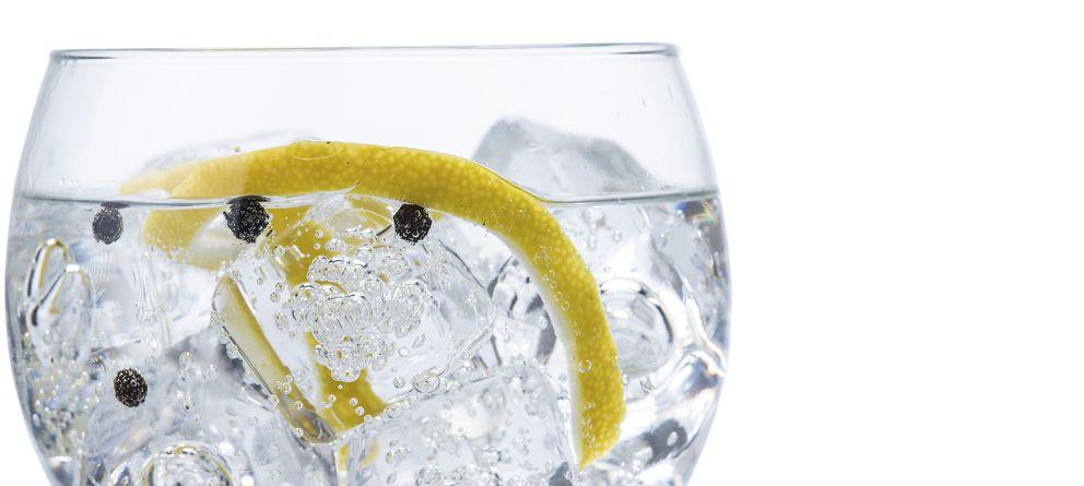Foto: El 'gin-tonic' perfecto no necesita demasiadas florituras. (iStock)