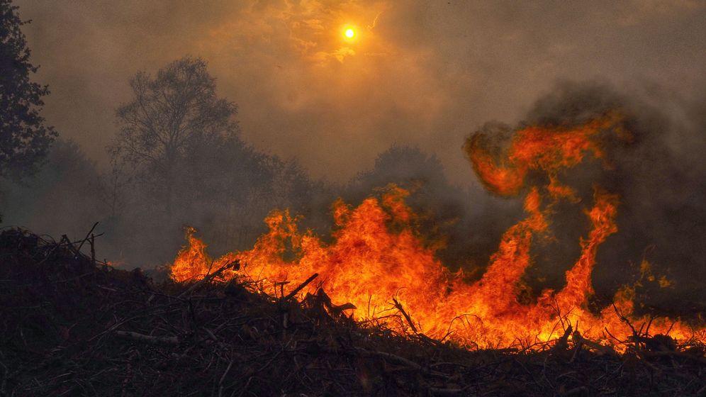 Foto: Incendios en Galicia (EFE)