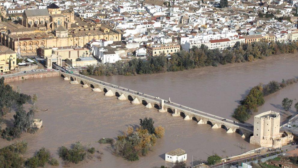 El 'número dos' del Guadalquivir infló en 1,3 M€ la limpieza del río