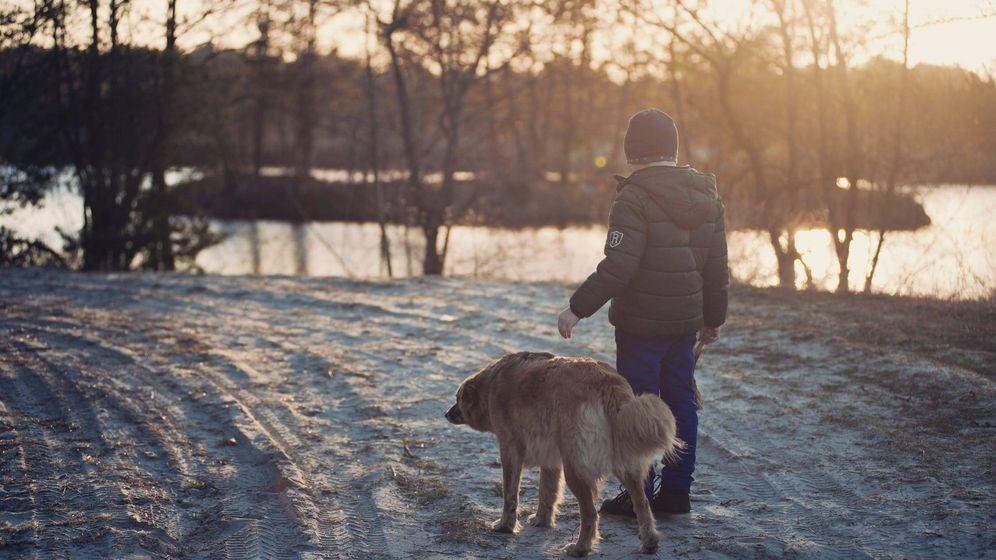 Foto: Un niño con su perro (Pexels)