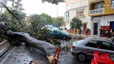 Temporal de lluvia y viento en Andalucía