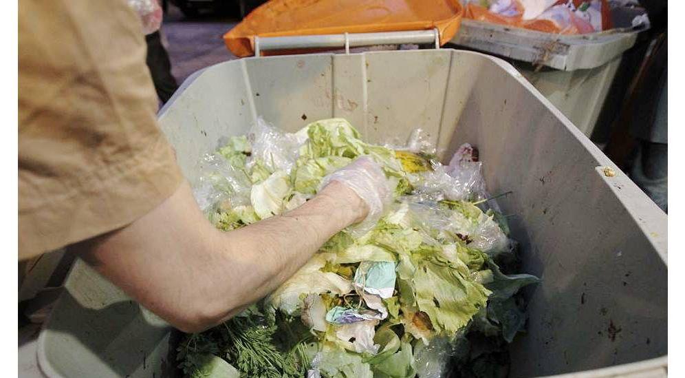 Foto: Una persona recoge alimentos de la basura. (EFE)