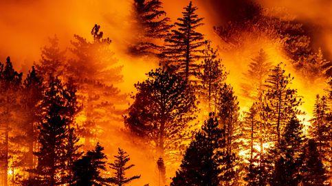 Los incendios en EEUU arrasaan 1M de Ha y dejan 29 muertos y miles de evacuados