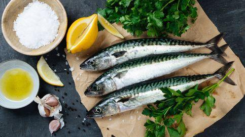Caballa, un pescado azul rico, económico y muy saludable