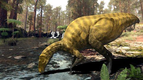 Descubren una especie de dinosaurio, hasta ahora desconocida, en Castellón