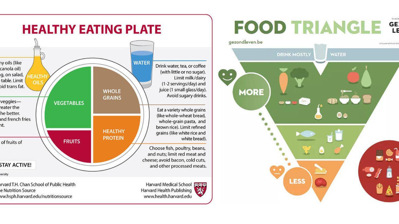 Nuevos modelos bien valorados por los nutricionistas.