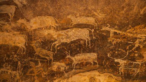 El antiguo coronavirus que pudo diezmar el este de Asia hace 25.000 años
