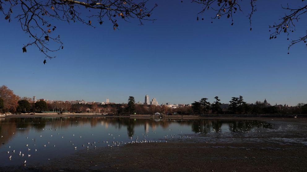 La guerra por las especies invasoras lleva a Madrid a electrocutar a 14.000 peces