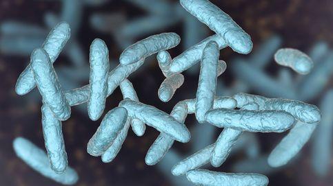 Dime como es tu microbiota y te diré si tendrás (o no) coronavirus