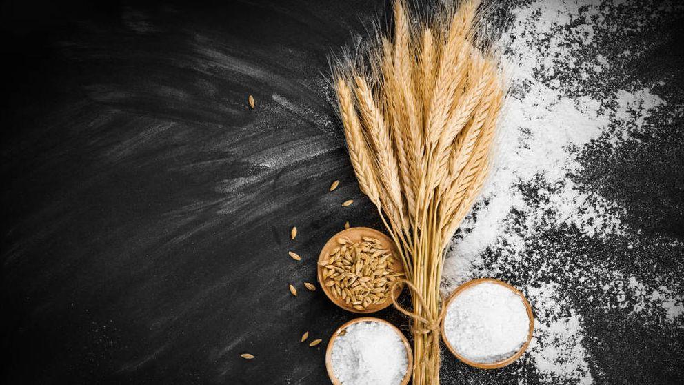 Trigo apto para celíacos: la edición genética llega a la salud