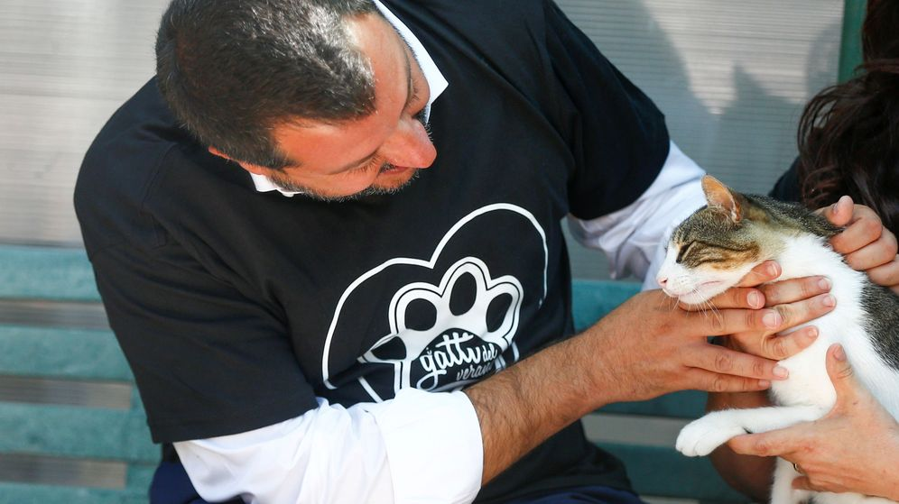 Foto: El primer ministro italiano, Matteo Salvini, acariciando a un gato durante un acto en Roma (Reuters/Yara Nardi)