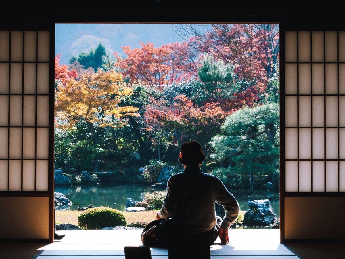 Foto: Un estilo decorativo nuevo llama a nuestra puerta. (Masaaki Komori para Unsplash)