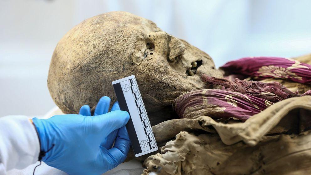 La momia que puede ser clave en la historia de las enfermedades