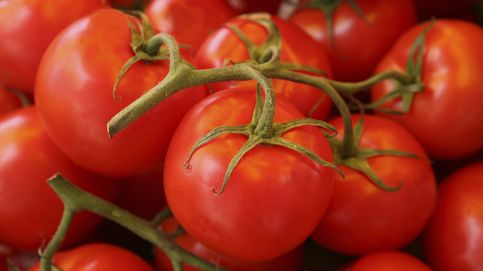 Descubren que la salsa de tomate puede ayudar a mejorar la fertilidad masculina