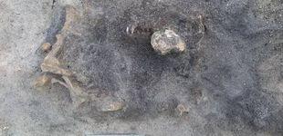 Post de Encuentran restos de un perro de hace 8.400 años enterrado junto a su dueño