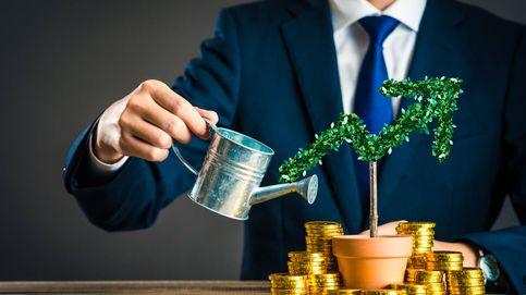 Citi emite su primer bono verde estructurado